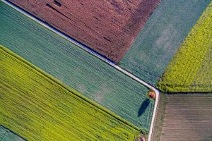 Aerial shot of rural fields.