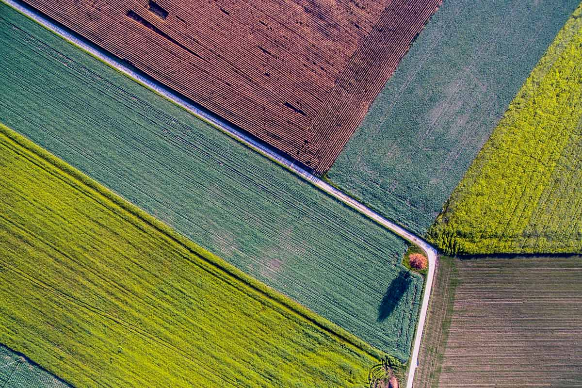 Aerial shot of rural fields.